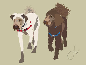 20140517-The-Labradoodle-Brothers